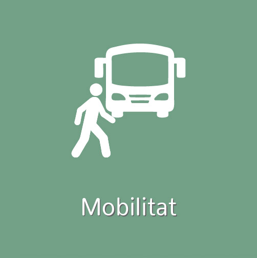 Mobilitat i transport