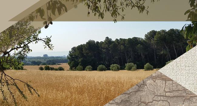 El Parc Agrari de Sabadell viu aquest diumenge un matí festiu en què es plantaran arbres i plantes aromàtiques