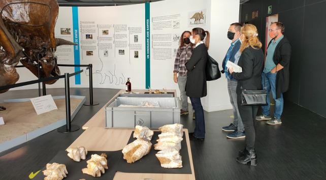 Visita al museu de paleontologia i als fòssils de dinoteri descoberts a Sabadell
