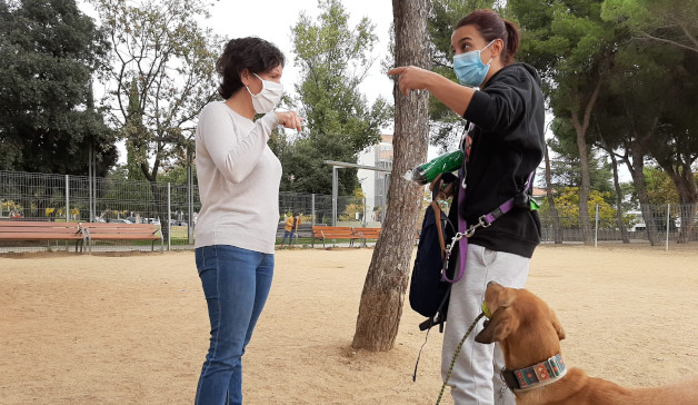 L'Ajuntament construirà un nou refugi municipal d'animals de cara al 2023