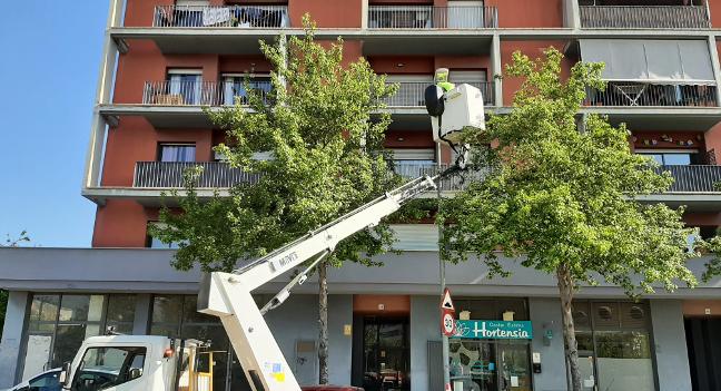 Continua la renovació de l'enllumenat als carrers de Sabadell