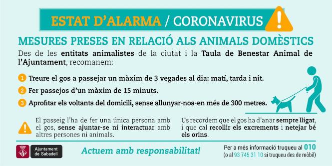 COVID-19: Recordatori de les indicacions per portar a terme la cura i alimentació dels animals de companyia a Sabadell durant l'Estat d'alarma