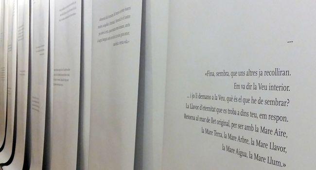 Taller d'immersió en l'escriptura de l'artista Fina Miralles