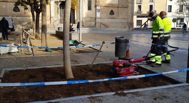 L'Ajuntament enjardina els parterres de la pl de Sant Roc