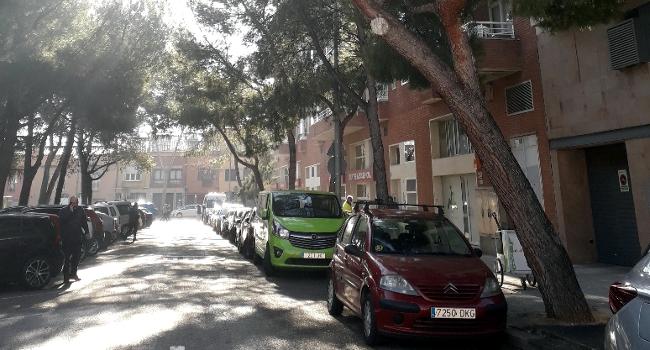 Es talen tres pins a la plaça del Taulí per evitar que caiguin després de les ventades del desembre