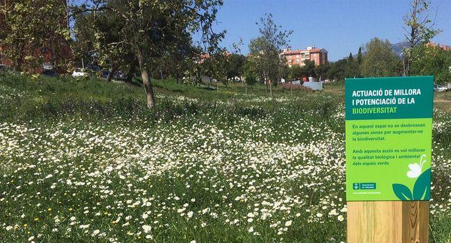 Sabadell potencia la biodiversitat als parcs de la ciutat