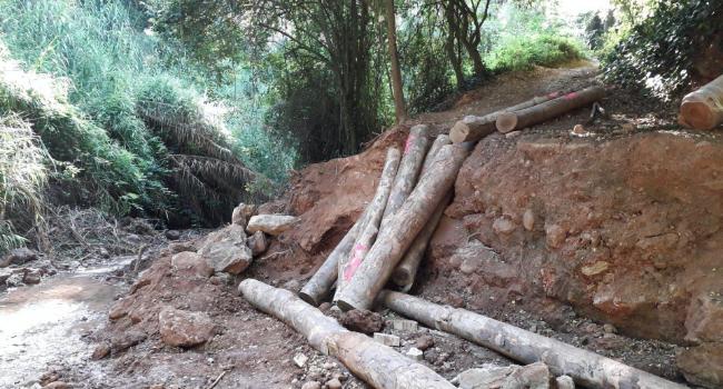 Comencen les obres de restauració del tram del torrent de Colobrers afectat pel temporal Glòria