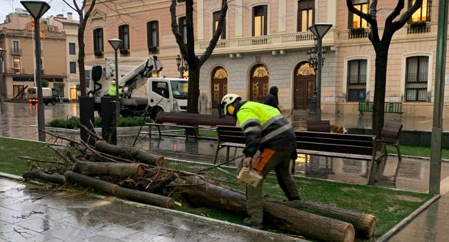 L'Ajuntament xifra en prop de 250.000 euros el cost dels desperfectes provocats pel temporal Glòria a Sabadell