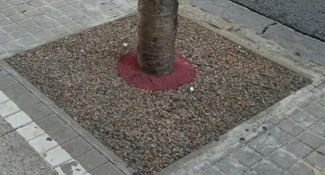 L'Ajuntament retira el paviment amb resina de prop de 300 escocells de les avingudes de Matadepera i de la Concòrdia