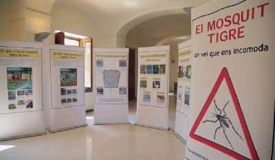 Sabadell acull per primer cop una exposició de la Diputació de Barcelona sobre la prevenció i control del mosquit tigre