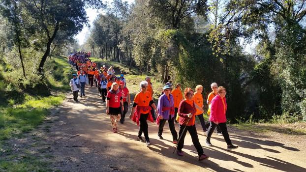 Subvencions per a programes i activitats adreçats a la gent gran de Sabadell