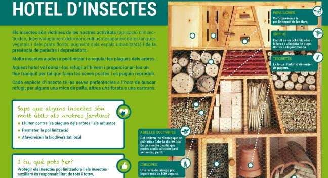 L'Ajuntament instal·la un hotel d'insectes al parc de Catalunya