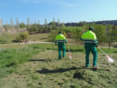Persones en atur adeqüen les zones verdes de les terrasses de la Clota del riu Ripoll amb programes d'ocupació del Vapor Llonch