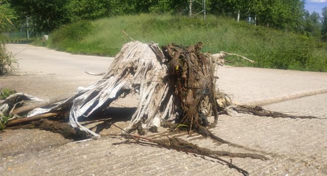 Els participants en el Let's Clean up Europe a Sabadell han recollit 125 kg de residus abocats al rodal