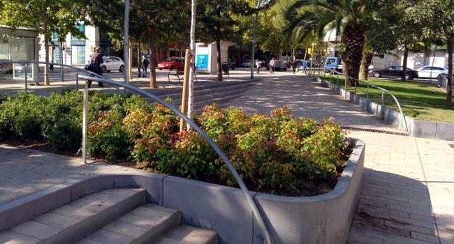 Plantació d'espècies arbustives als parterres de la plaça del Pi