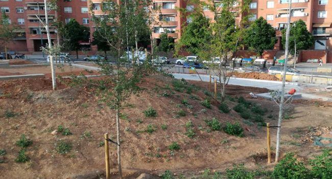 L'arranjament del nou parc de la plaça d'Espanya avança a bon ritme