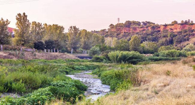 El Programa d'actuacions del parc fluvial del Ripoll planteja una segona gran actuació estratègica per transformar el riu i el seu entorn
