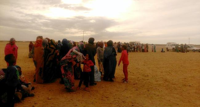 Visita als campaments de refugiats sahrauís propers a Tindouf (Algèria)