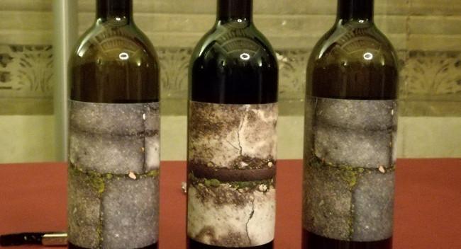 Presentada una nova varietat de ceba i el vi Arraona d'enguany, productes d'agricultura de proximitat de Sabadell